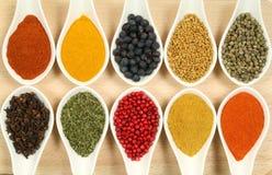 Especiarias coloridas Imagem de Stock Royalty Free