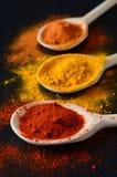 Especiarias coloridas em cozinhar colheres Fotos de Stock