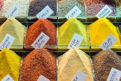 Especiarias coloridas na exposição Imagens de Stock