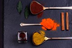 Especiarias coloridas nas colheres Imagens de Stock