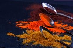 Especiarias coloridas nas colheres Fotografia de Stock Royalty Free
