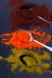 Especiarias coloridas nas colheres Imagem de Stock