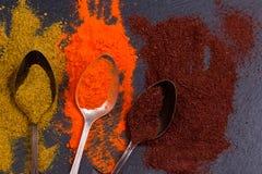 Especiarias coloridas nas colheres Foto de Stock