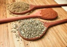 Especiarias coloridas nas colheres de madeira Imagens de Stock