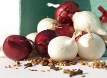 Especiarias com a cebola vermelha e branca Fotografia de Stock Royalty Free