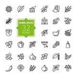 Especiarias, condimentos e ervas - linha fina mínima grupo do ícone da Web Coleção dos ícones do esboço Imagem de Stock
