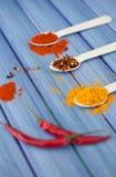 Especiarias quentes Imagem de Stock