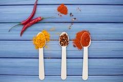 Especiarias quentes Fotografia de Stock