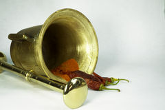 Especiarias de bronze da pimenta vermelha do almofariz e do pilão Fotos de Stock