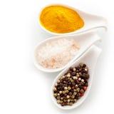 Especiarias de sal, de pimenta e de caril Fotografia de Stock