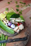Especiarias de Tom Yum do alimento tailandês famoso imagens de stock