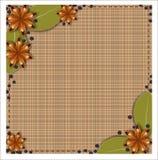 Especiarias diferentes em um fundo de toalhas de mesa quadriculado Foto de Stock