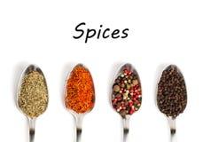 Especiarias diferentes nas colheres do ferro isoladas no branco Imagens de Stock Royalty Free