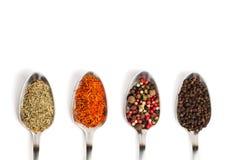Especiarias diferentes nas colheres do ferro isoladas no branco Fotografia de Stock Royalty Free