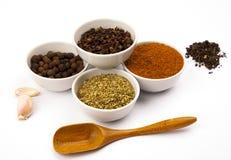 Especiarias diferentes nos pratos brancos Foto de Stock