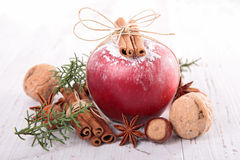 Especiarias do Natal imagem de stock