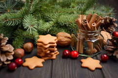 Especiarias do Natal, cookies do pão-de-espécie e porcas Conceito do feriado decorado com ramos e arandos do abeto fotos de stock royalty free