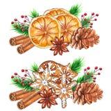 Especiarias do Natal da aquarela isoladas no fundo branco ilustração royalty free