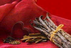 Especiarias e coração das vagens da baunilha Fotografia de Stock Royalty Free