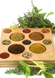Especiarias e ervas fotografia de stock royalty free