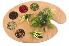 Especiarias e ervas foto de stock