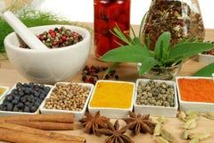 Especiarias e ervas. imagem de stock