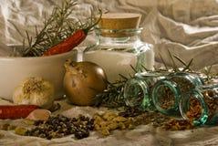 Especiarias e ervas Foto de Stock Royalty Free