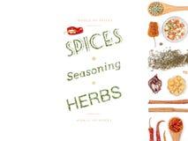 Especiarias e ervas diferentes no fundo branco Vista superior Fotos de Stock