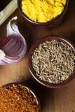 Especiarias e ervas em umas bacias cerâmicas Ingredientes do alimento e da culinária Fotos de Stock