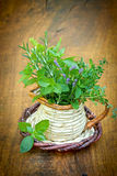Especiarias e ervas frescas Fotografia de Stock Royalty Free
