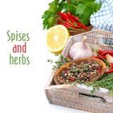 Especiarias e ervas frescas em uma bandeja de madeira, isolada no branco Imagens de Stock Royalty Free