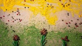 Especiarias e ervas sob a forma de uma flor Especiarias da mistura Vista superior Espaço para o texto imagem de stock