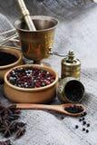 Especiarias e moedor Foto de Stock