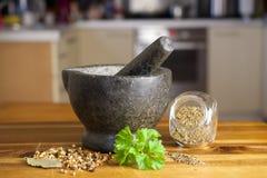 Especiarias e moinho Foto de Stock Royalty Free