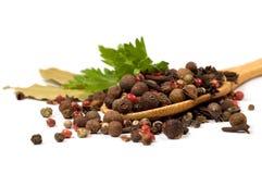 Especiarias e salsa em uma colher de madeira Imagens de Stock Royalty Free