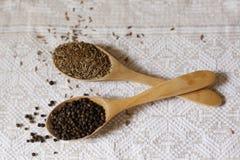 Especiarias em colheres de madeira foto de stock