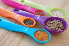 Especiarias em colheres de medição coloridas Imagem de Stock