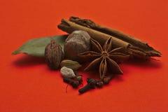 Especiarias em um fundo vermelho fotografia de stock