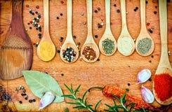 Especiarias frescas e secadas - tempero na colher imagens de stock