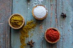 Especiarias herbs Caril, sal, açafrão da pimenta, cúrcuma, masala do tandori e outro em um fundo rústico de madeira Foto de Stock