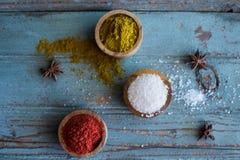 Especiarias herbs Caril, sal, açafrão da pimenta, cúrcuma, masala do tandori e outro em um fundo rústico de madeira Fotos de Stock