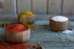 Especiarias herbs Caril, sal, açafrão da pimenta, cúrcuma, masala do tandori e outro em um fundo rústico de madeira Fotos de Stock Royalty Free