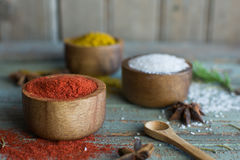 Especiarias herbs Caril, sal, açafrão da pimenta, cúrcuma, masala do tandori e outro em um fundo rústico de madeira Foto de Stock Royalty Free