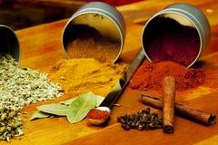 Especiarias indianas Imagens de Stock
