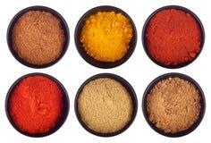 Especiarias indianas foto de stock