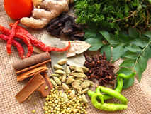 Especiarias indianas do caril fotos de stock