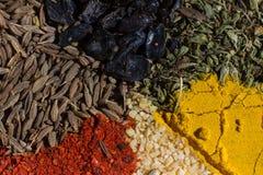 Especiarias macro coloridas ajustadas com especiarias diferentes Imagens de Stock