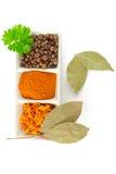 Especiarias. Mistura de ervas diferentes Foto de Stock Royalty Free