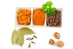 Especiarias. Mistura de ervas diferentes Imagem de Stock Royalty Free