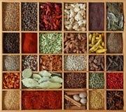 Especiarias na caixa de madeira Imagens de Stock